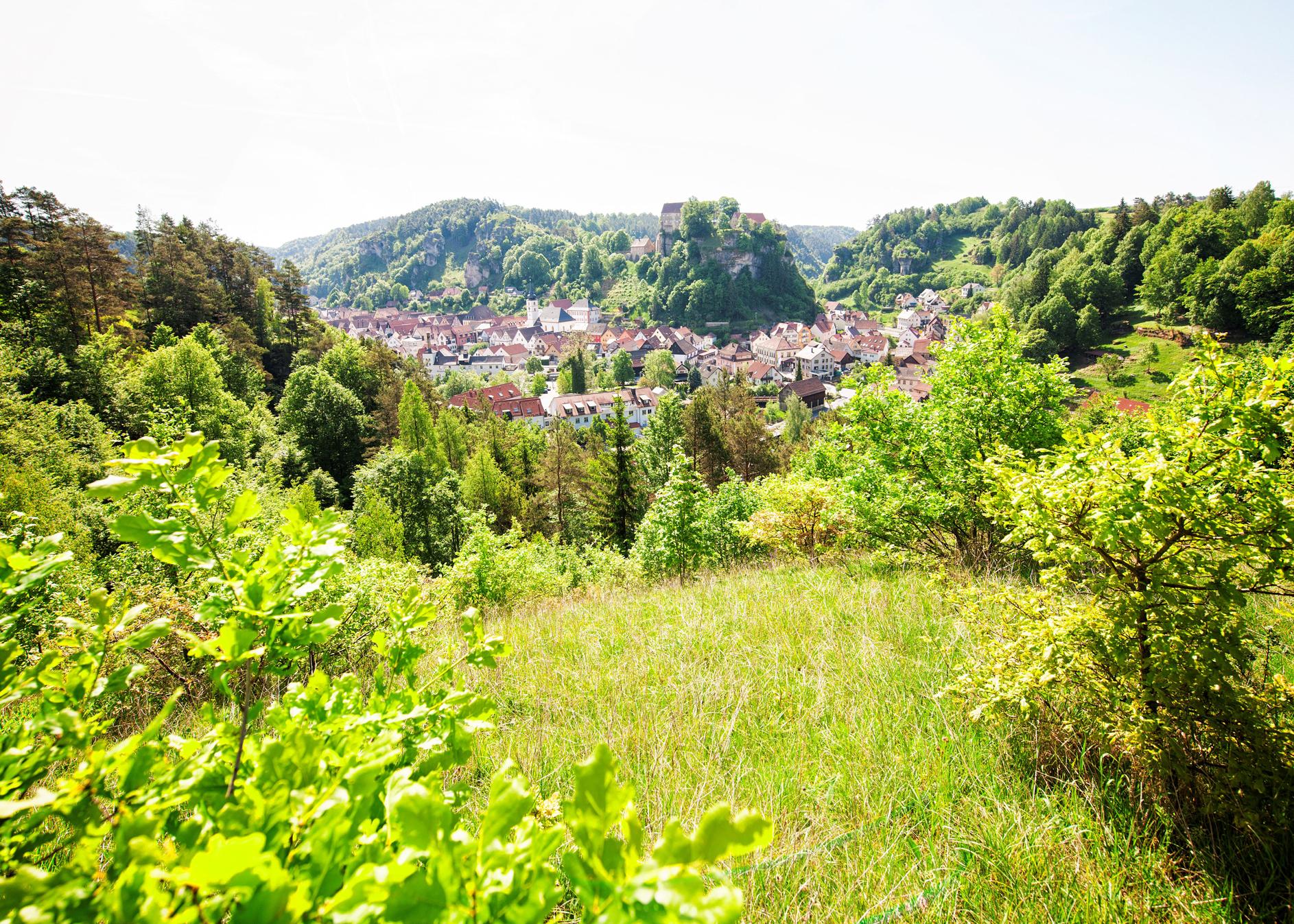 downloads_images_Burg_Pottenstein_c_TZ_Fraenkische_Schweiz-Florian_Trykowski